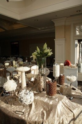 candy buffet, wedding DIY, champagne, white candy