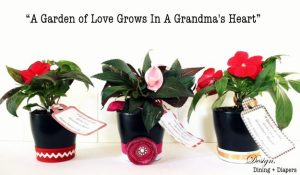 Dollar Store Flower Pots For Someone Special (Gift Idea)