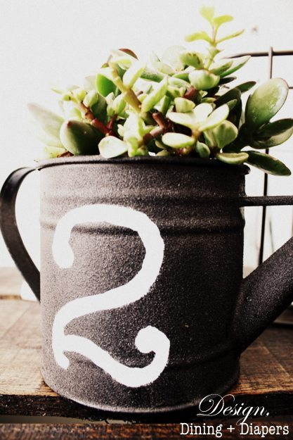 Succulent Planter from Watering Can