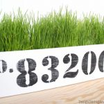 DIY Wheatgrass Planter from Design, Dining + Diapers