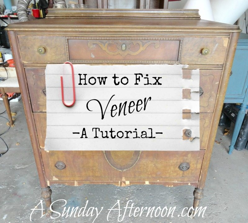 How-to-Fix-Veneer