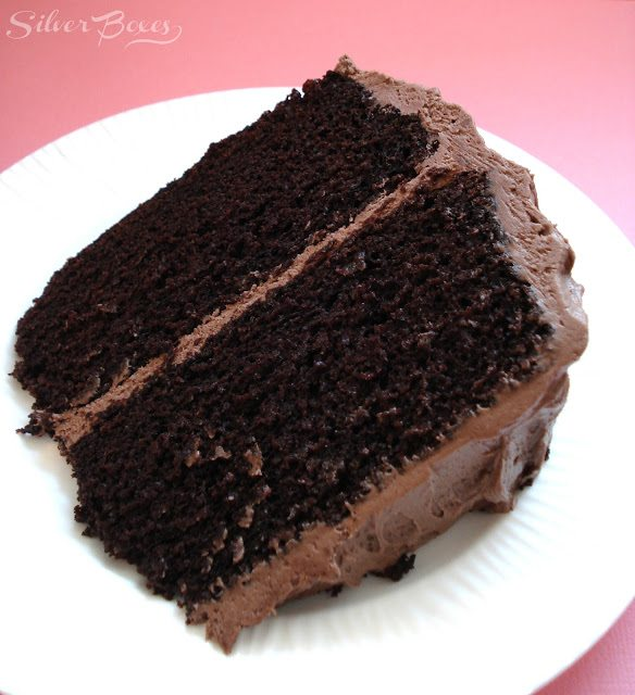 Yummy chocolate cake with a hint of Dr. Pepper flavor