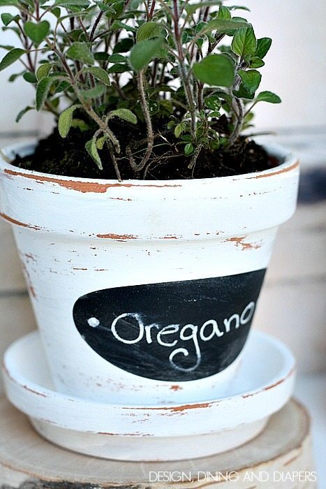 DIY Herb Pots! Perfect for outside on a little table. via designdininganddiapers.com