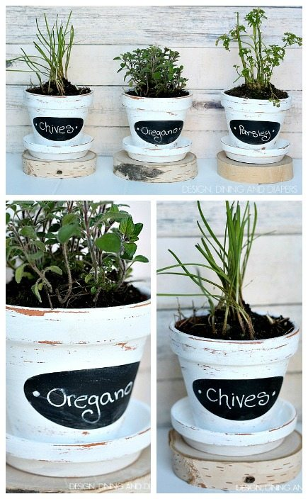 DIY Herb Pots! These look so easy and are not only cute but practical. designdininganddiapers.com