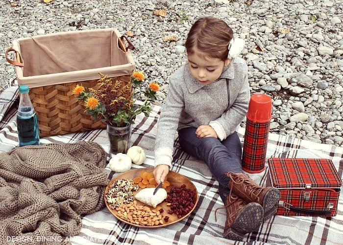 Tips For Planning A Fall Picnic_4