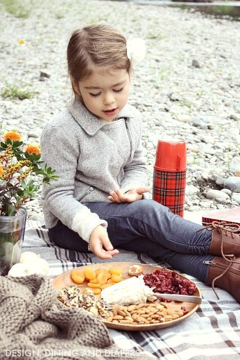Tips For Planning A fall Picnic_6
