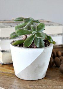 Paint Dipped Concrete Pot
