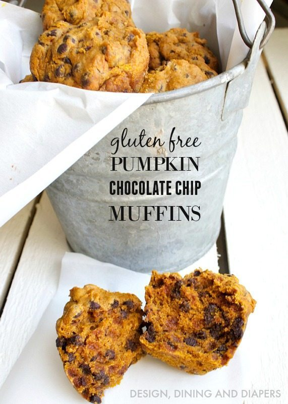 Gluten Free Pumpkin Chocolate chip muffin recipe