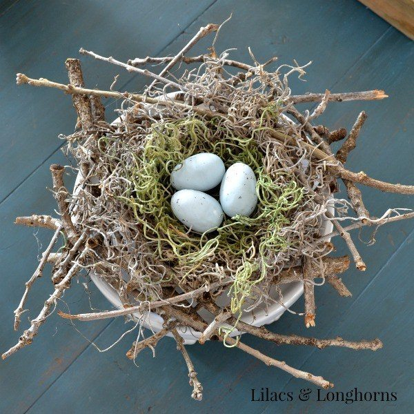 twiggy-birds-nest