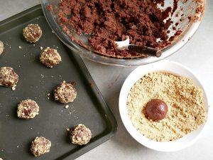 Gluten Free No Bake S'mores Bites