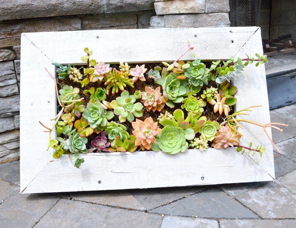 DIY-Succulent-Planter-fabulous-tutorial