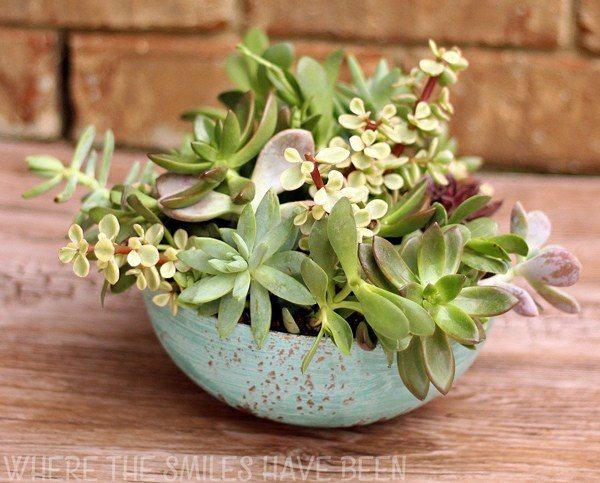 Faux-Aged-Copper-Succulent-Planter-Housewarming-Gift-Final3