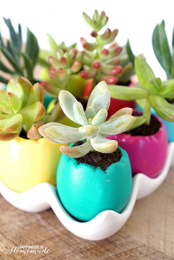 Succulent-Egg-Planters