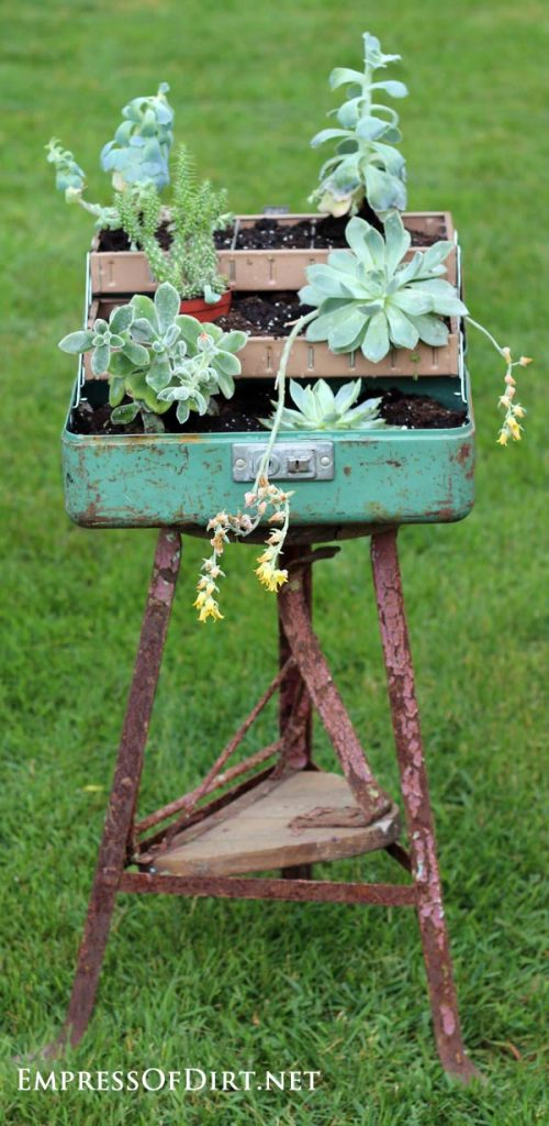 Succulent-tackle-box-on-stool