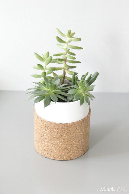 cork succulent planter 2