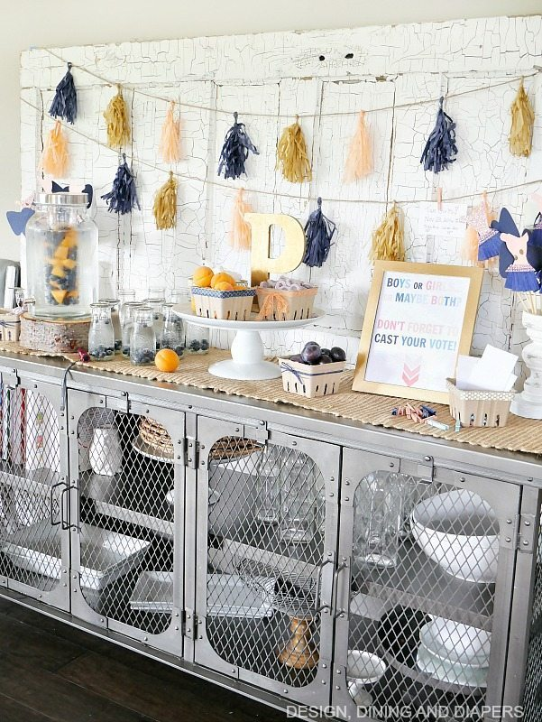 Farmhouse Chic Gender Reveal Party