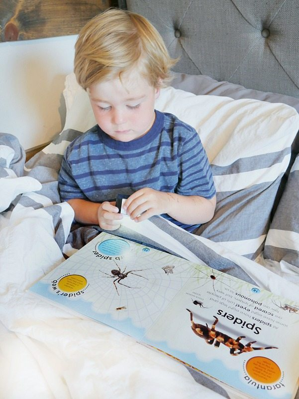 Reading In Bed With Light Adorne by Legrand