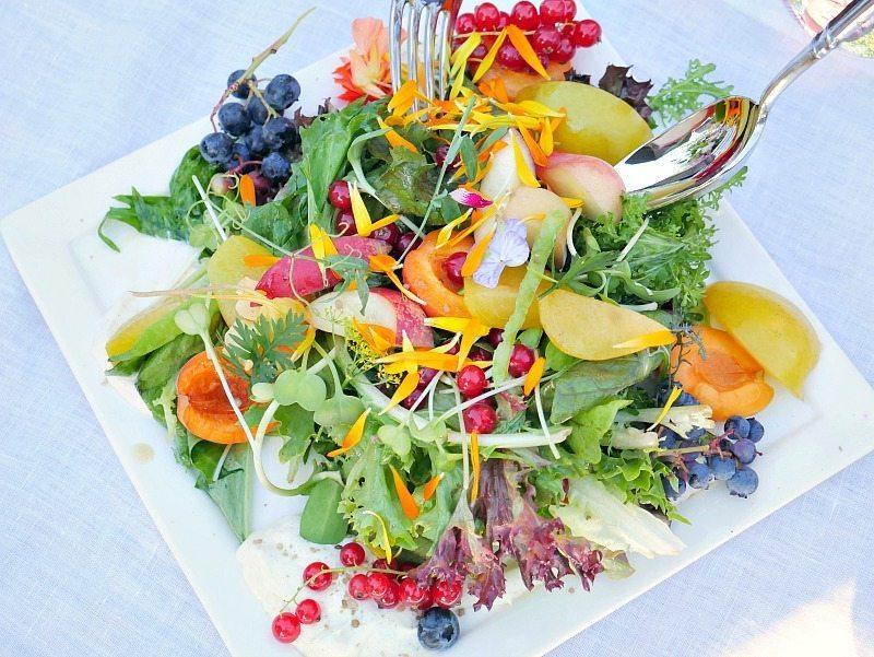 Sur La Table - Salad