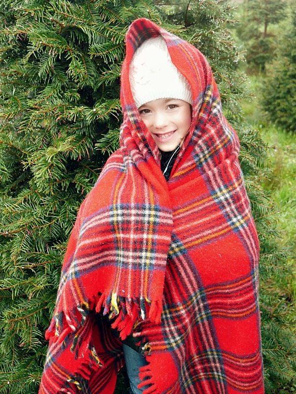 christmas-tree-hunt-7