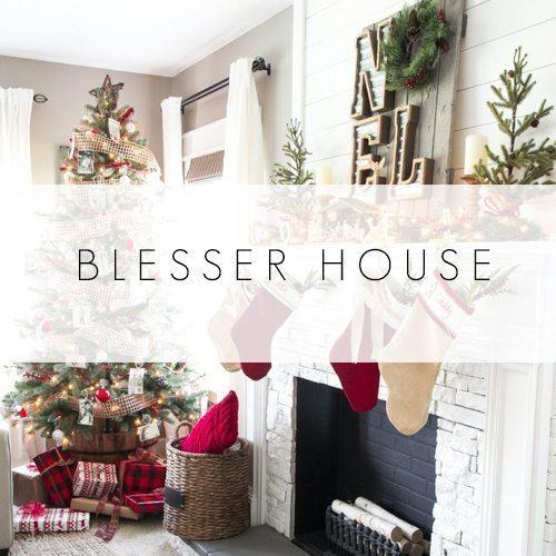 blesser-house-1