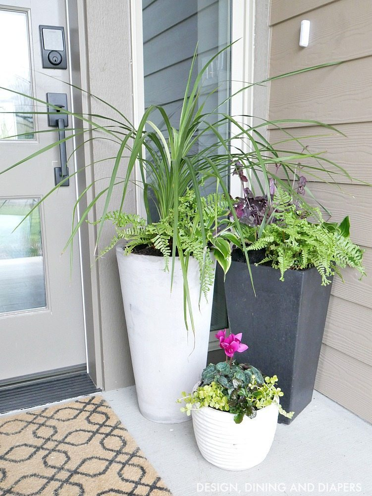 Front porch planter ideas taryn whiteaker Plants next to front door
