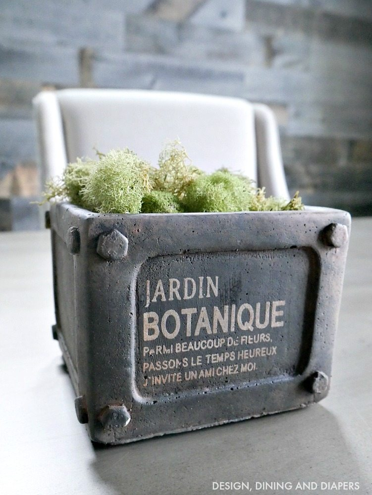 Industrial Planter With Moss